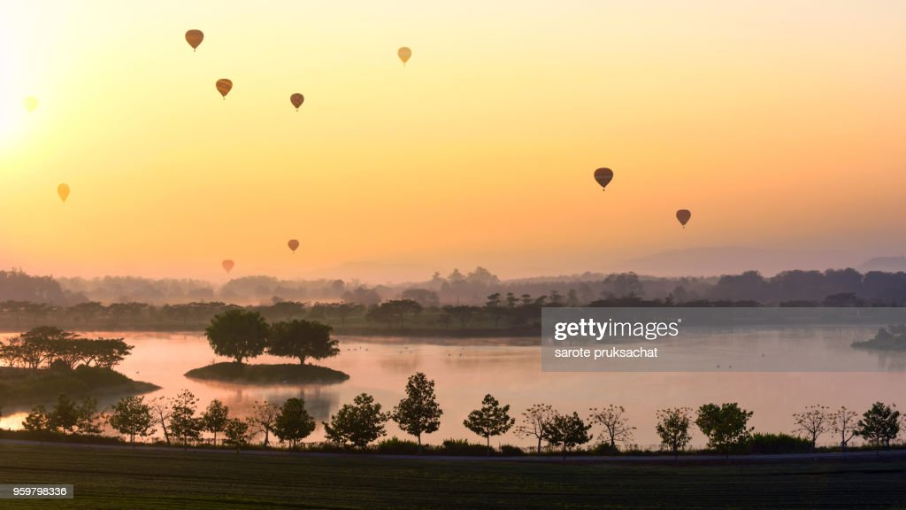 Tea plantation Field and Hot Air Balloons  in morning at Chiang Rai Thailand . : Stock-Foto