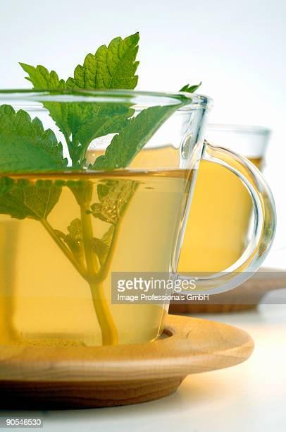 Tea with lemon balm, close up