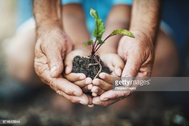 teach kids how far a little care can go - sustainability stock photos and pictures