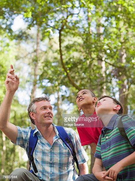 Teacher and children in forest