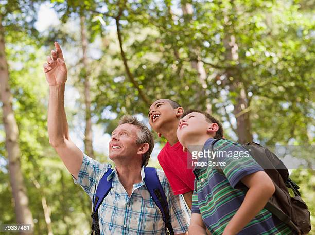 maestro y los niños en el bosque - parque natural fotografías e imágenes de stock