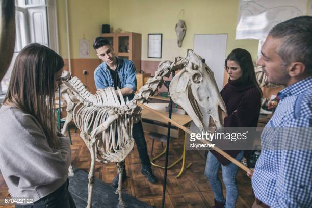 Teacher and group of students analyzing animal skeleton in the classroom.