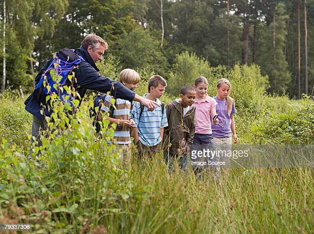 teacher and pupils at nature reserve - nature reserve stock pictures, royalty-free photos & images