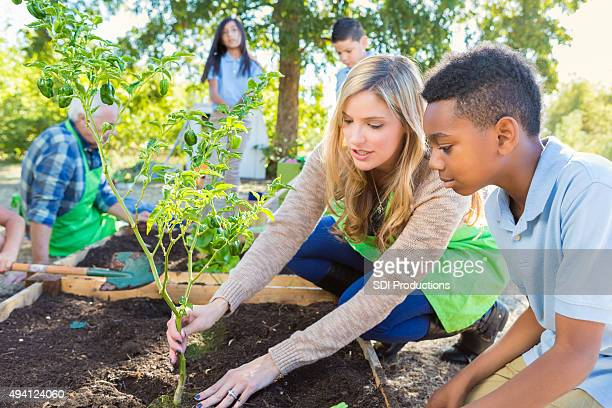 Teacher and student working in garden during farm field trip