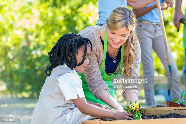 teacher helping student plant vegetables during farm field trip - primary age child stock pictures, royalty-free photos & images