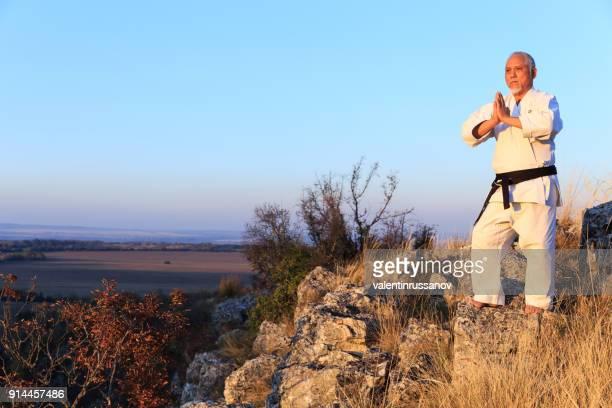 leraar maditating op hoogste heuvel - vechtkunst stockfoto's en -beelden