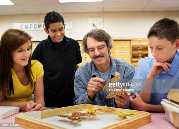 Teacher showing butterfly specimens to students