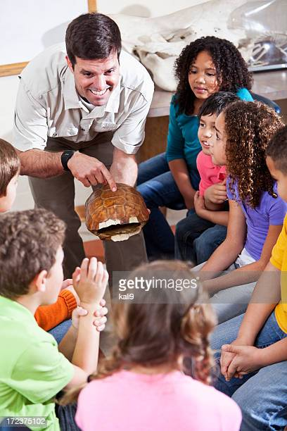 teacher showing turtle shell to students - zoo keeper stock pictures, royalty-free photos & images