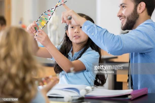 Leraar maakt gebruik van DNA-helix-model tijdens de les