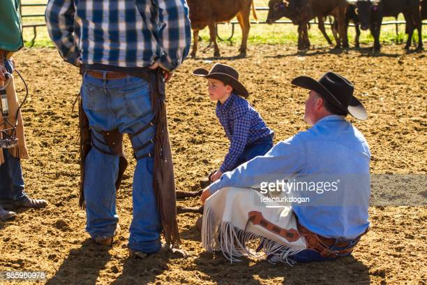 teaching cow cattle veal roping herding stamping marking castrating at santaquin valley of salt lake city slc utah usa - human castration photo stock photos and pictures