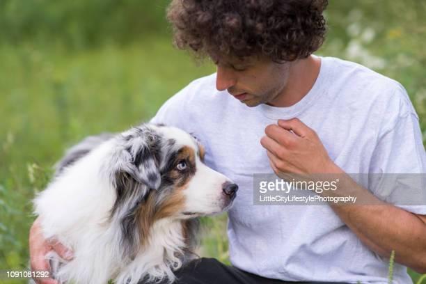しつけ - 動物調教師 ストックフォトと画像
