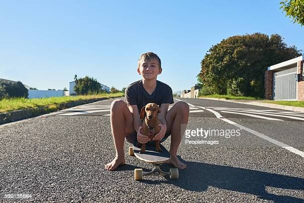 teaching my dog has to skate - barefoot boy stock photos and pictures