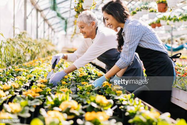 teaching the new generation of gardeners - new generation stock pictures, royalty-free photos & images
