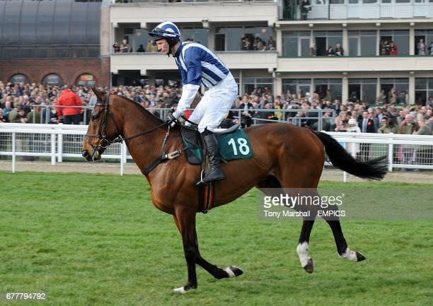 Teaforthree ridden by jockey John Thomas McNamara going to post prior to the Diamond Jubilee National Hunt Chase during the Cheltenham Festival