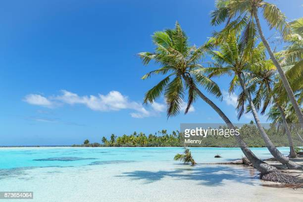 teahatea fakarava french polynesia atoll beach - idyllic stock pictures, royalty-free photos & images
