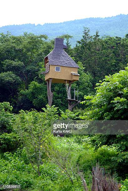 Teahouse On The Tree In Japan On July 17 2005 Japanese architect Terunobu Fujimori 58 built the teahouse on the tree in April 2004 He named it...