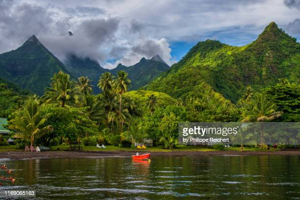 teahupoo - tahiti stock pictures, royalty-free photos & images