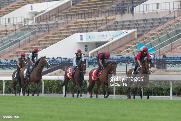Team Ballydoyle horses Highland Reel Deauville War Decree Lancaster Bomber and Roly Poly training on the turf track to prepare for the LONGINES Hong...
