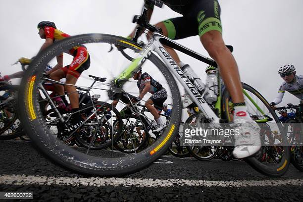 Team Cannondale-Garmin rider makes his way up the hill away from Bells Beach during the Cadel Evans Ocean Road Race on February 1, 2015 in Melbourne,...