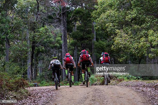 A team cresting a hill heading down to the next transition during the Adventure Race World Championship on November 11 2016 in Shoalhaven Australia