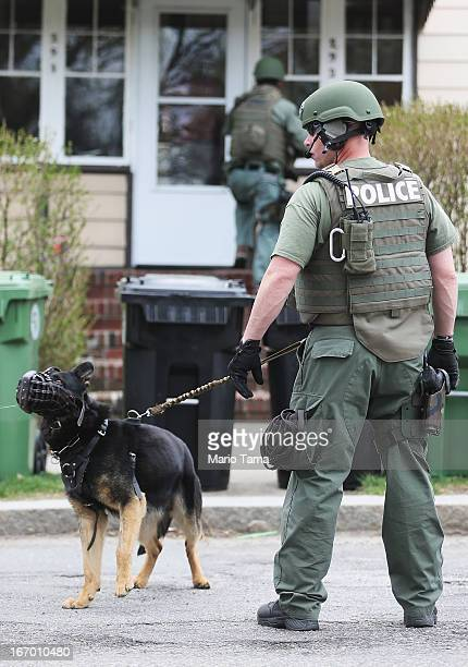 SWAT team member handles a dog during the search for 19yearold Boston Marathon bombing suspect Dzhokhar A Tsarnaev on April 19 2013 in Watertown...