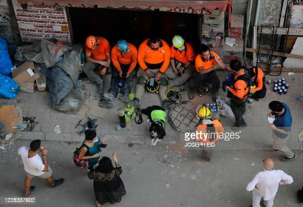 Team of Chilean rescue workes and their sniffer dog take a rest during their search operation through the rubble of a badly damaged building in...