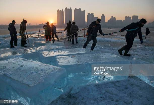 A team of Chinese workers pull a large block of ice that will be used in the making of ice sculptures from the frozen Songhua River in preparation...