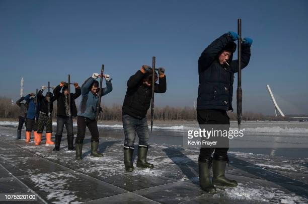 A team of Chinese workers use ice picks to dislodge large blocks of ice that will be used in the making of ice sculptures from the frozen Songhua...