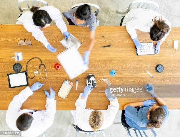equipo de médicos que trabajan juntos - laboratorio clinico fotografías e imágenes de stock