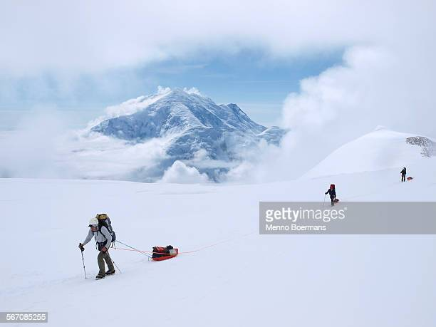 a team of mountaineers are roped up while crossing the upper kahiltna glacier on their way to 14.000 feet camp on mount mckinley in alaska. - mt mckinley stock photos and pictures