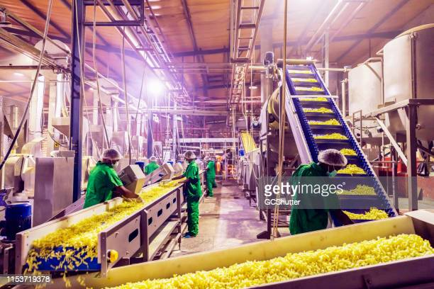 Team of Workers Checking the Quality of Freshly Prepared Snacks at a Factory in Africa