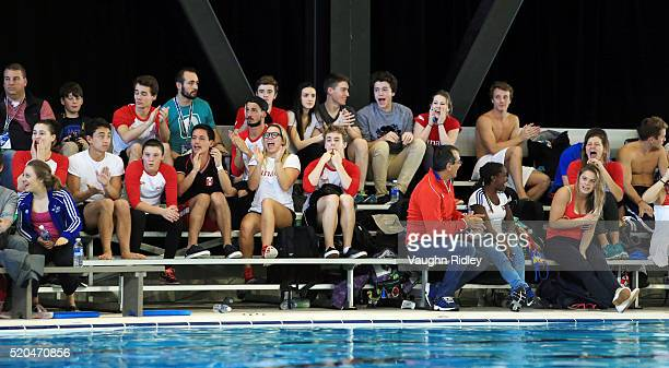 Teammates cheer as Vincent Riendeau of Canada wins Gold in the Men's 10m Final during Day Three of the FINA Diving Grand Prix at Centre Sportif de...