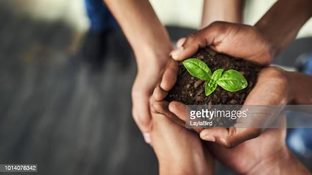 Teamarbeit, essentiell für Wachstum