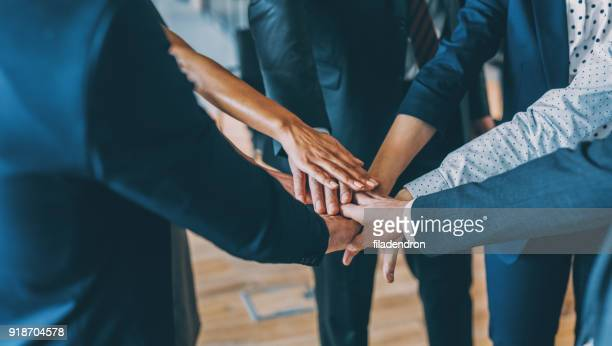 teamwork - human resources stock pictures, royalty-free photos & images