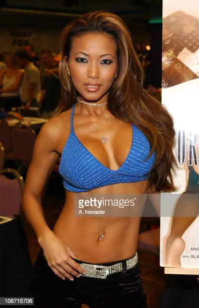 A OneDay Public Fan Fair and Convention Celebrating Adult Entertainment at Hollywood Park Casino in Inglewood California United States
