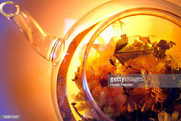 teapot with herb tea - pot marigold stock pictures, royalty-free photos & images