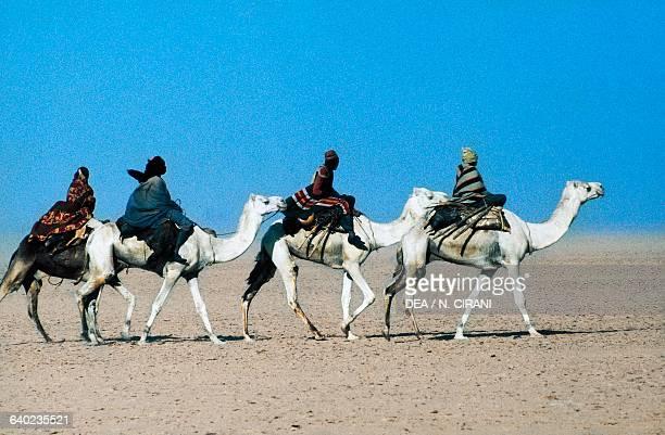 Tebu caravan with camels near the Bilma oasis Tenere desert Air and Tenere National Nature Reserve Sahara desert Niger