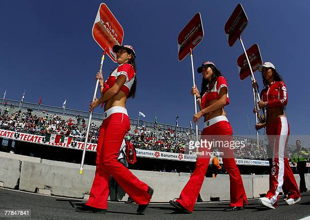 Tecate grid girls before the start of the ChampCar World Series Grand Premio Tecate on November 11 2007 at the Autodromo Hermanos Rodriguez in Mexico...