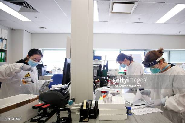Technical Officer, Malinna Yeang, Hospital Scientist, Sarah Lang and Technical Officer, Madeline Camacho work in the COVID-19 sample preparation area...
