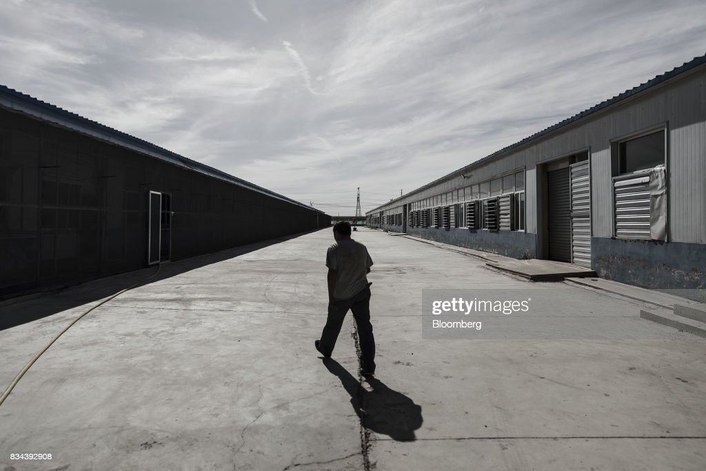 A technician walks between warehouse containing bitcoin mining machines at a mining facility operated by Bitmain Technologies Ltd. in Ordos, Inner Mongolia, China, on Friday, Aug. 11, 2017. Bitmainis one of the leading producers of bitcoin-mining equipment and also runs Antpool, a processing pool that combines individual miners from China and other countries, in addition to operating one of the largest digital currency mines in the world. Photographer: Qilai Shen/Bloomberg via Getty Images