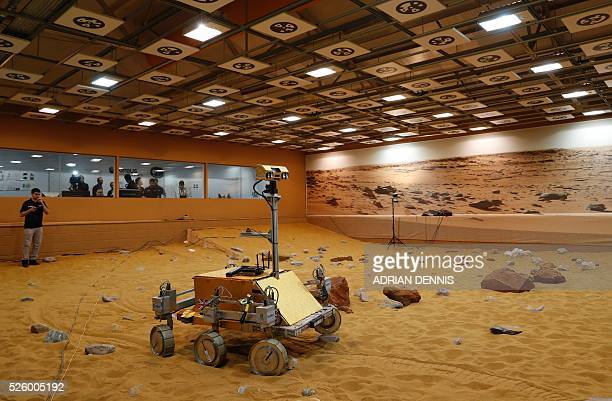 A technician watches a prototype Mars rover in a simulated Mars environment at the Airbus Defence and Space company in Stevenage on April 29 2016...