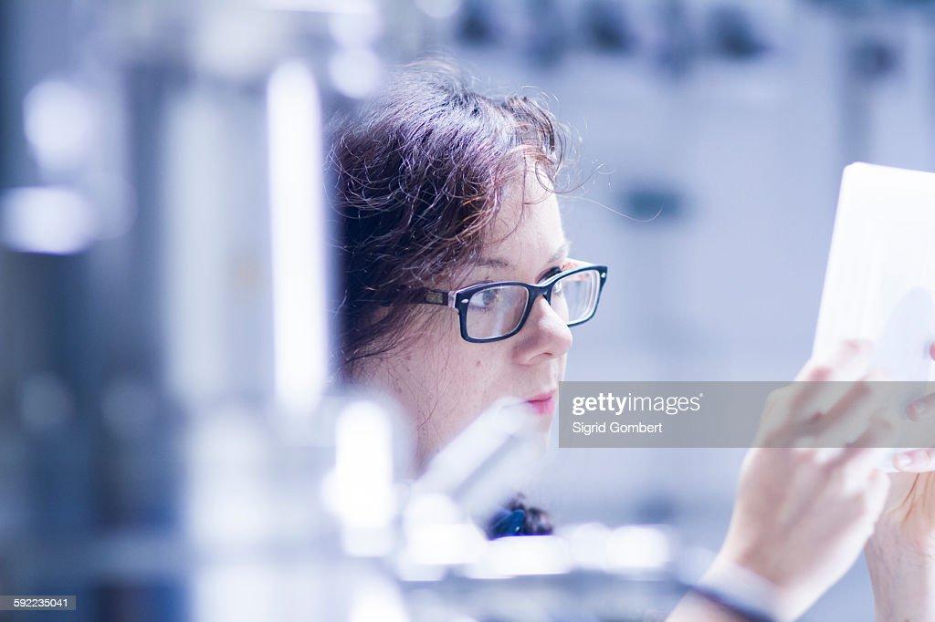 Technician working in laboratory : Stock-Foto