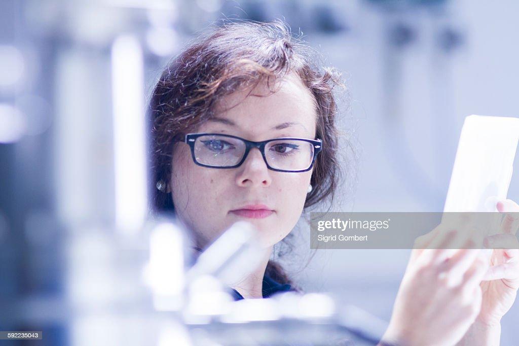 Technician working in laboratory : ストックフォト