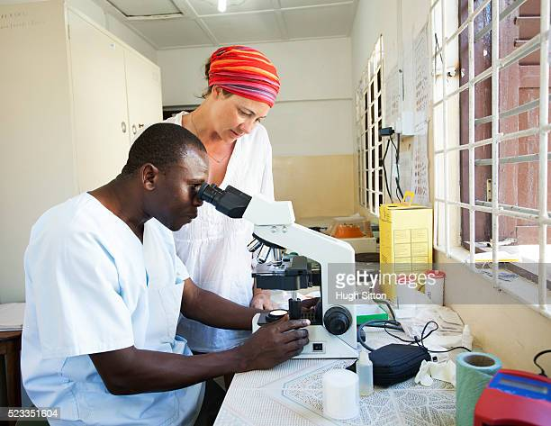 technicians using microscope in clinic laboratory. - malaria parasite stock pictures, royalty-free photos & images
