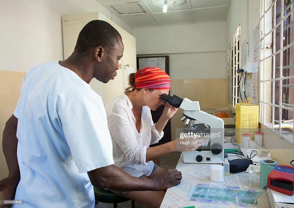 Technicians using microscope in clinic laboratory. : Stock Photo