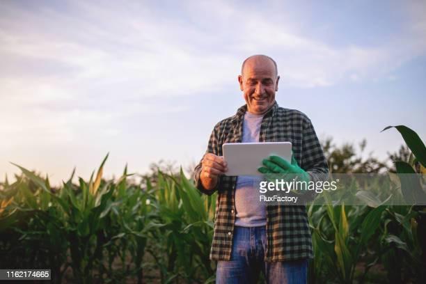 a tecnologia pode realmente vir a calhar! - agricultura - fotografias e filmes do acervo