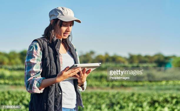 technology helps make farming so much simpler - agricultural occupation stock pictures, royalty-free photos & images