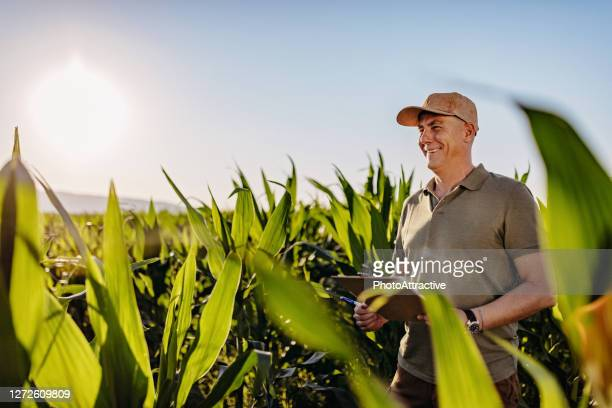 technology is a great asset - agronomist stock pictures, royalty-free photos & images