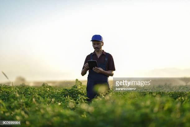Tecnología es clave para aumentar la productividad agrícola