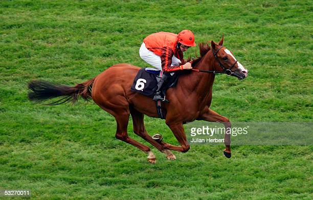 Ted Durcan and Silca's Sister land The London Clubs Maiden Fillies Stakes Race run at Newbury Racecourse on July 22 2005 in Newbury England